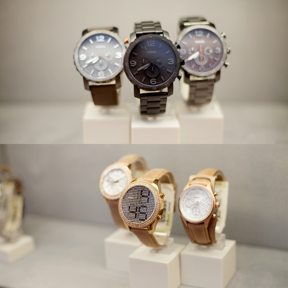 Fossil_opening_04