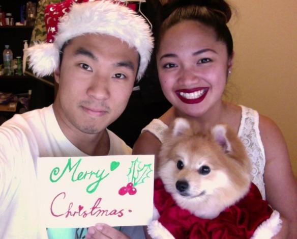 Merry-Christmas_2013